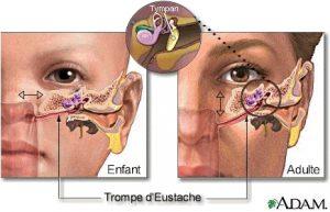 Prévention de l'otite en ostéopathie!
